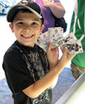 Kid Excited about Collecting Upper Deck Trading Cards